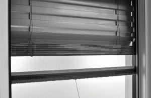 Insektenschutz Rollo Fenster